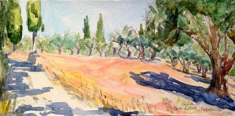 Kefalonian olive grove